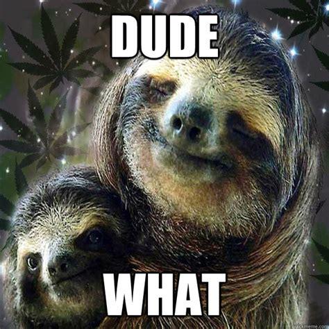 Sloth Fitness Meme - 10 sloth memes quickmeme