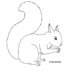 2020 Other Images Squirrel Drawing Outline