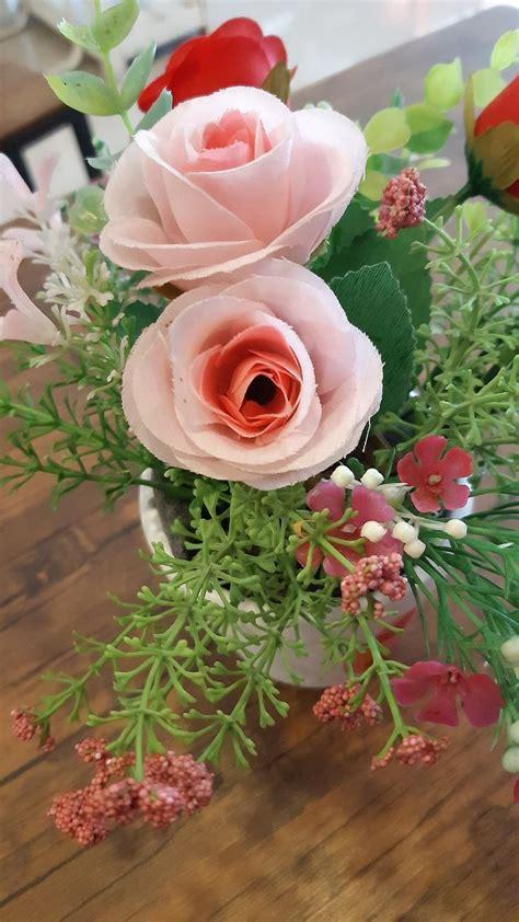 ดอกไม้สีชมพู | ดอกไม้สีชมพู