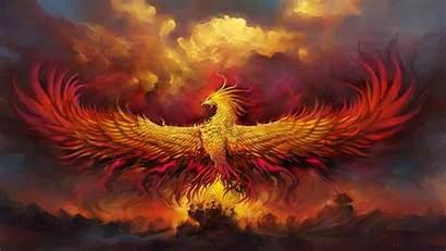 Phoenix Fantasy Bird Wings Background 1080p Fhd