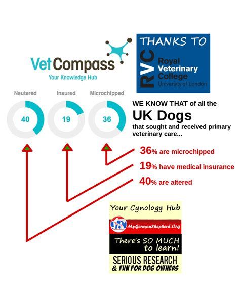 Finding the best pet insurance for cats in uk. Interesting: this number of dogs are altered - insured - microchipped | Medical prescription ...