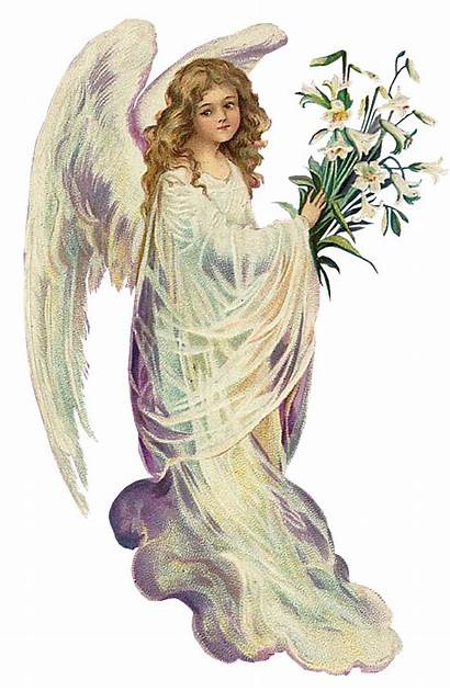 Angels Victorian Angel Engel Anjos Plaatjes Tubes