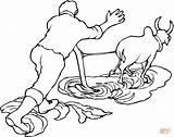 Ox Coloring Plow Pulling Clipart Para Printable Colorear Dibujo Arado Oxen Cartoon Clip Drawing sketch template