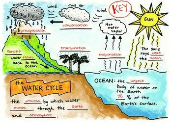 science doodle   water cycle interactive notebook