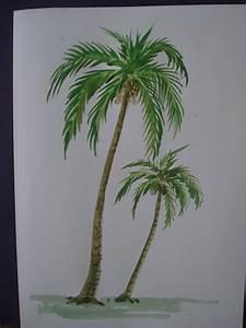 Coconut Tree Drawing Lessons | www.pixshark.com - Images ...