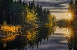 Wallpaper, Sunlight, Landscape, Forest, Fall, Sunset, Lake, Nature, Reflection, Photography