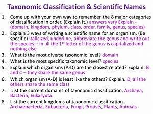 Classification & Dichotomous Key - ppt video online download