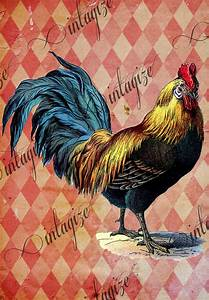 Vintage Victorian French Rooster. Printable INSTANT DIGITAL