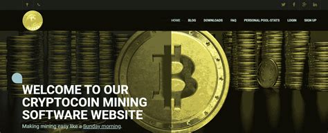 Top 3 coins for huge roi in 2021? Top 10 Best Bitcoin Mining Software for 2021 | CurrentBitcoinNews