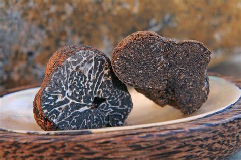 comment cuisiner les truffes noires comment conserver une truffe fraiche maison baumont