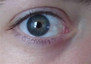 Quel Fard A Paupiere Pour Yeux Marron : quel fard paupi re pour mes yeux maquillage forum beaut ~ Melissatoandfro.com Idées de Décoration