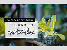 Plantea Blog Qué plantar en septiembre en el huerto