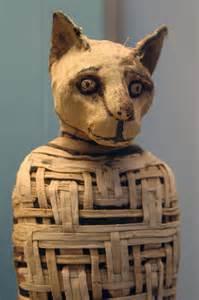 picasso s basement cat mummies