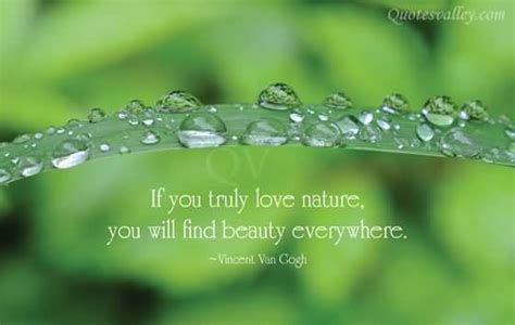 Natural Beauty Quotes Quotesgram