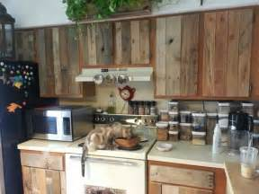 diy kitchen furniture diy cabinet refacing with pallet board kitchen cats pallet cabinet and pallet