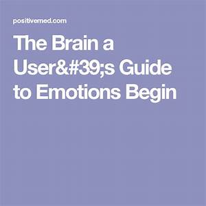 The Brain A User U0026 39 S Guide To Emotions Begin