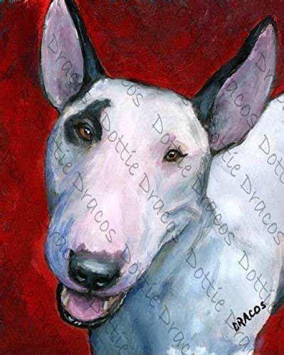 amazoncom english bull terrier dog art print bull