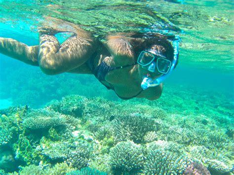 sharm el sheikh snorkeling trip shaspo tours egypt