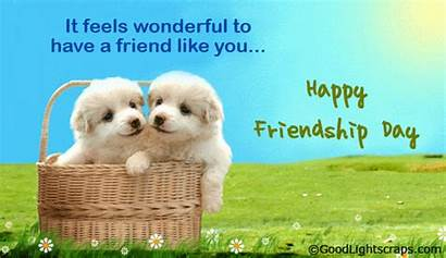 Friendship Cards Friend Happy Greetings Quotes Wishes