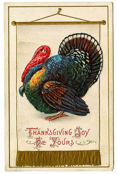Thanksgiving Turkey Banner Happy Clipart Clip Graphics