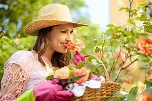 Rosen Schneiden Wann : rosen im sommer schneiden ist das eine gute idee ~ Eleganceandgraceweddings.com Haus und Dekorationen