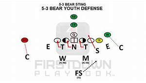 5-3 Bear Youth Defense