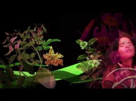 Jardine S Videolike
