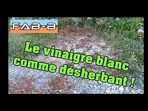 Vinaigre Blanc 14 Desherbant : je teste le d sherbage au vinaigre youtube ~ Melissatoandfro.com Idées de Décoration