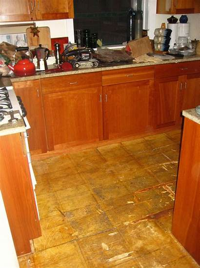 Floor Paint Wooden Adhesive Tiles Wood Covered