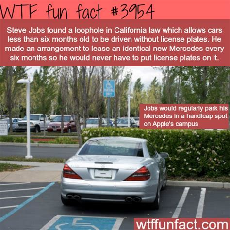 27 WTF FUN FACTS TO AMUSE YOU ? Chaostrophic