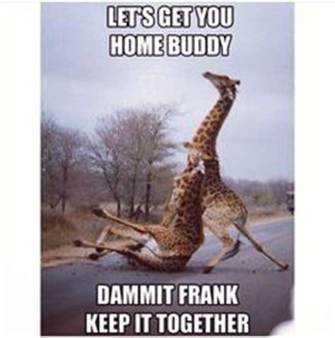 Drunk Giraffe Meme - drunk giraffe meme