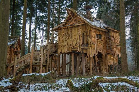 holzhaus baumhaus baumhuette kostenloses foto auf pixabay