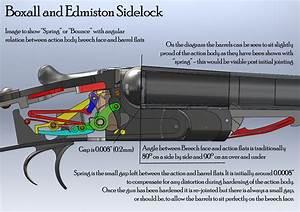 Shotgun Terminology Article