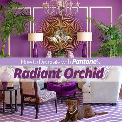 radiant orchid home decor decorating with pantone s radiant orchid home pantone