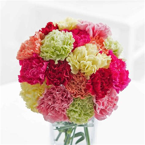 simply carnations flyingflowerscouk