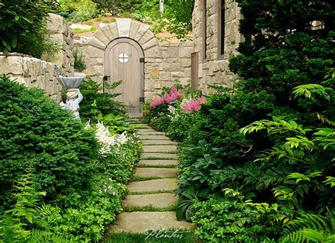images  gardening  pinterest topiaries