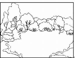 Wald Ausmalbild Malvorlage Blumen