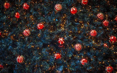 merry christmas poems shayari in english hindi 2018