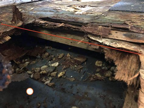 Replacing rotted shed flooring without changing foundation