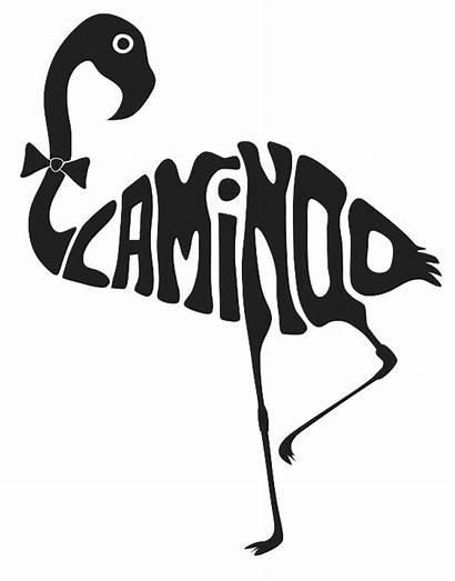 Typography Animal Drawing Animals Word Flamingo Words