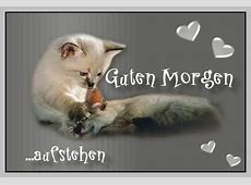 gbbilderclaudia Guten Morgen Katzenbilder