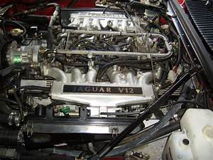 Engine Bay Pics  - Page 2 - Jaguar Forums