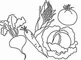 Vegetables Coloring Vegetable Pages Fruits Printable Fruit Colouring Drawing Types Various Printables Flower Bestcoloringpagesforkids Print Sheets Books Worksheets Results Popular sketch template