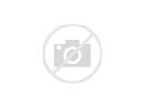 Insurance Claims Career Path