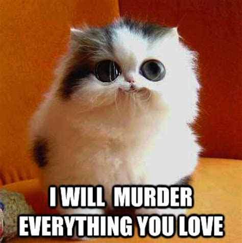 Murder Memes - really funny memes i will murder your whole family