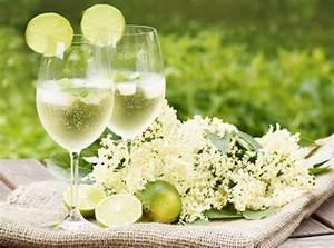 Sodawasser Selber Machen : hugo rezept ~ Orissabook.com Haus und Dekorationen