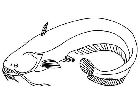 gambar mewarnai binatang ikan