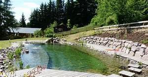 Construction Piscine Naturelle : piscine merlet paysagiste barembach pisciniste bas rhin 67 ~ Melissatoandfro.com Idées de Décoration