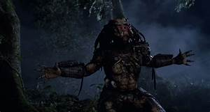Predator's getting a reboot, with an intriguing writer ...