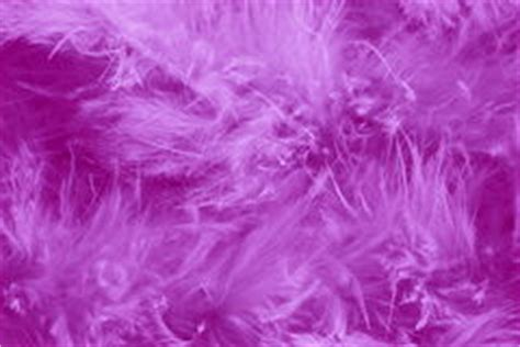 soft purple feathers texture royalty  stock photo